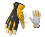 Cold Weather Gloves / PCI-801