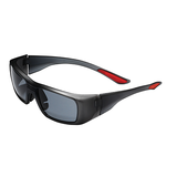 EVO®200 Safety Spectacles