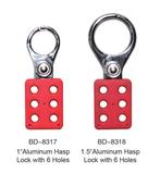 Aluminum hasp lock