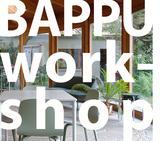 BAPPU-workshoptermine für 2020