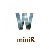 miniR